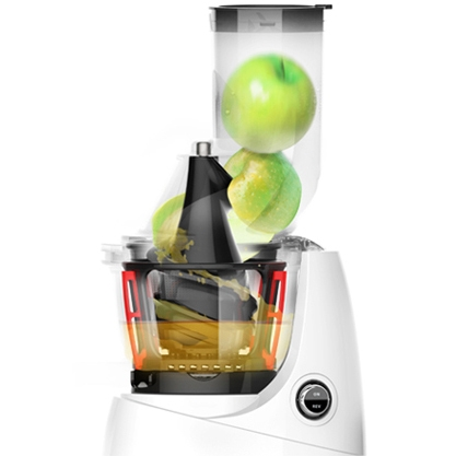 Kuvings Whole Slow Juicer B6000 Manual : Sito za sok s ve?im rupicamaCitrusetaGalerijaBlueberry MojitoPineapple juiceUsing for purposes ...